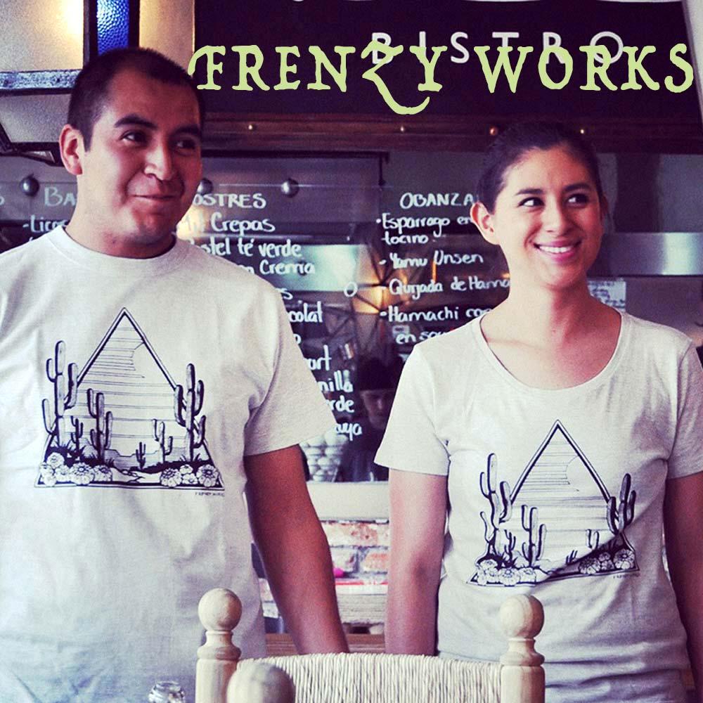 FRENZY WORKS